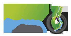 Logo Elite Pneus